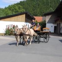 LandSelection Ferienhof Zur Hasenkammer